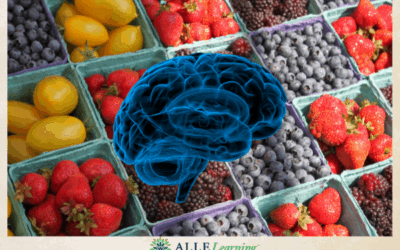 Can Diet Help Boost Brain Health? Research is Promising
